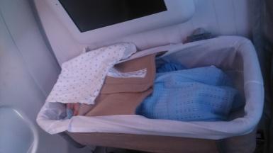 Baby bassinet Iberia 2